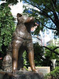 Hachiko-statue-shibuya-tokyo---famous-meeting-point-tokyo-japan